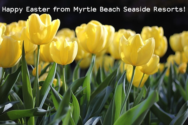 Celebrating Easter in Coastal Myrtle Beach